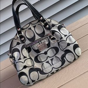 Coach Poppy Lurex Glamour Tote Bag